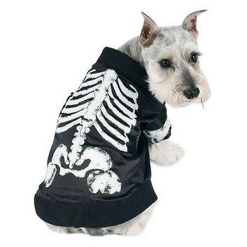BuySeasons Skeledog Dog Halloween Costume medium