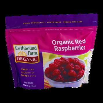 Earthbound Farm Organic Red Raspberries