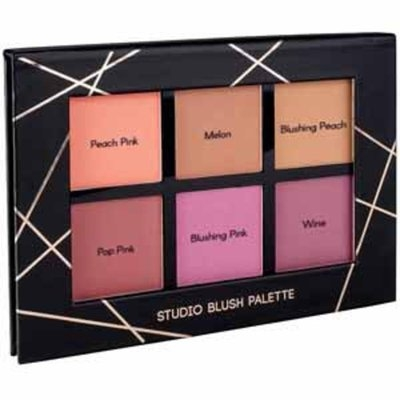 Profusion Cosmetics Studio Blush Palette 6 Color Blush