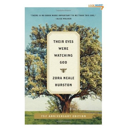 an analysis of the three men in the novel their eyes were watching god by zora neale hurston