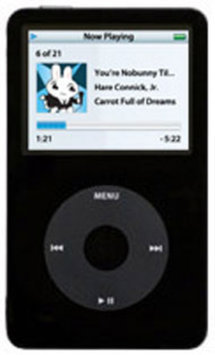 Apple iPod Classic - 5th Generation