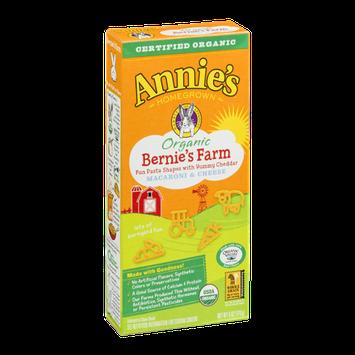 Annie's Homegrown Organic Bernie's Farm Macaroni & Cheese