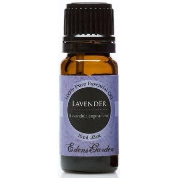 Edens Garden Lavender 100% Pure Therapeutic Grade Essential Oil- 10 ml