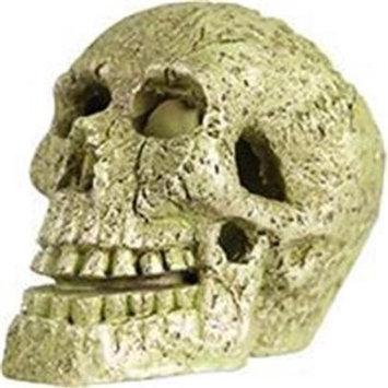 GLOFish Skull Aquarium Ornament