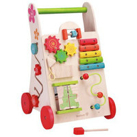 Maxim EverEarth Activity Walker
