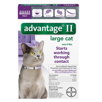Advantage II Cats 9+ lbs, 6 Months, 6 ea