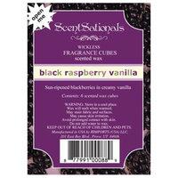 ScentSationals Wickless Fragance Cubes - Black Raspberry Vanilla (6 Cubes)