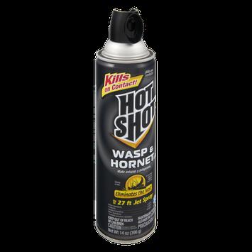 Hot Shot Wasp & Hornet Killer