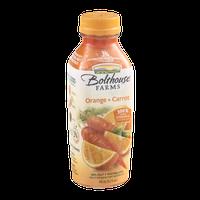 Bolthouse Farms 100% Fruit & Vegetable Juice Orange + Carrot Flavor