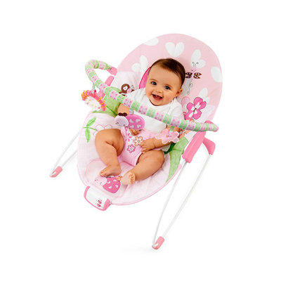 Bright Starts Pretty in Pink Meadow Blossoms Bouncer