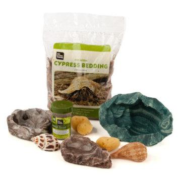All Living ThingsA Hermit Crab Starter Kit