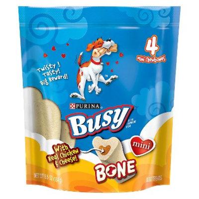 Purina Busy Bone Busy Bone Chicken & Cheese Mini Dog Treats - 4 pk