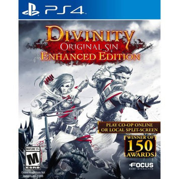 Maximum Family Games Divinity Original Sin Enh (PS4) - Pre-Owned