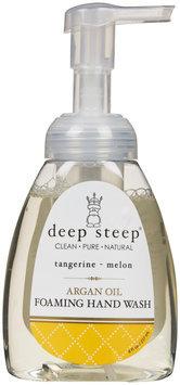 Deep Steep Argan Oil Foaming Hand Wash - Tangerine Melon