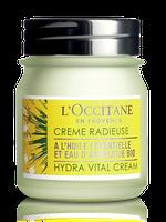 L'Occitane Angelica Hydra Vital Cream