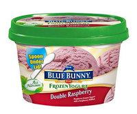 Blue Bunny Frozen Yogurt Double Raspberry