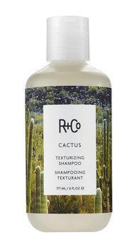 R+Co Palm Springs Cactus Texturizing Shampoo
