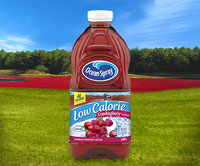 Ocean Spray Low Calorie Cran•Raspberry® Cocktail