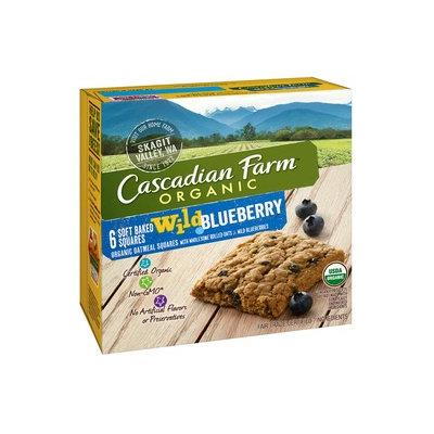Cascadian Farm Organic Wild Blueberry Soft Baked Squares
