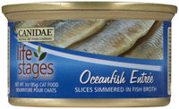 Canidae Life Stages Oceanfish Slices Entree - 12x3oz