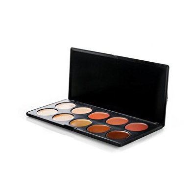 Bh cosmetics BH Cosmetics 10 Color Camouflage and Concealer Palette