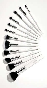ColourPop Brush Bundle Brush Set