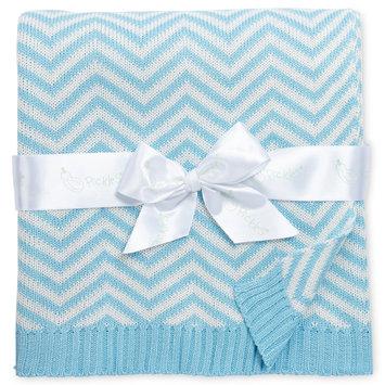 Asstd National Brand Pickles Chevron Baby Blanket - Blue