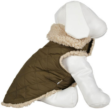 Fab Dog Quilted Shearling Jacket - Olive