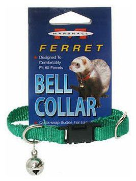 Marshall Pet Products MR00104 Ferret Bell Collar Hunter Green