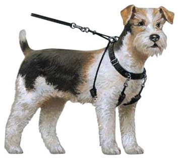 Sporn Pet Halter Harness