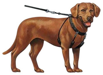 Sporn Products, Inc. Sporn Dog Stop Pull Halter Large Black