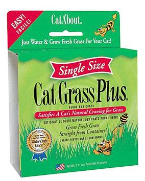 Gimborn CRD418730 Cat Grass Plus 2.1Oz - Tub