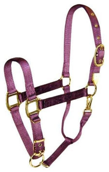 Hamilton Halter Company - Adjustable Chin Halter With Snap- Plum Average - 1DAS AVPM