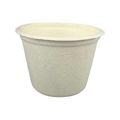 Asean Corporation cup