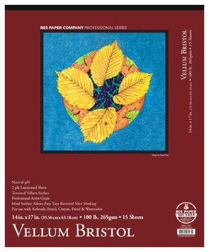 Bee Paper Company Bee Paper 2-Ply Vellum Bristol Pad, 14