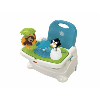 Fisher Price Precious Planet Healthy Care Booster Chair