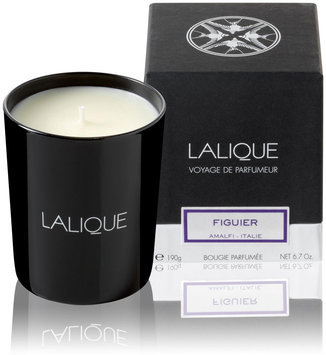 Lalique - Scented Candle - Figuier Amalfi