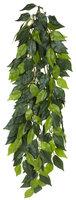 Exo-terra Exo Terra Silk Terrarium Plant - Ficus