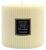 Root Candles Unscented Grecian Pillar Candle, 3 x 3
