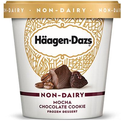 Haagen-Dazs Mocha Chocolate Cookie Non-Dairy Frozen Dessert