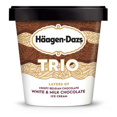 Haagen-Dazs Trio Triple Chocolate Ice Cream
