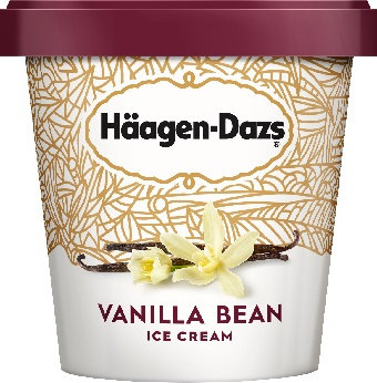 Haagen-Dazs Vanilla Bean Ice Cream