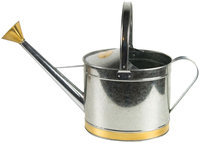 Plastec Products 2 gal Galvanized Watering Can