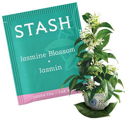 Stash Tea Jasmine Blossom Green Tea