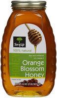 Tree of Life Raw Honey - Orange - 2 lb