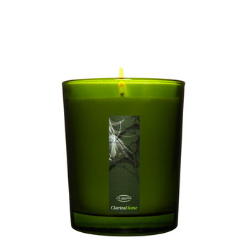 Clarins Lumière d'Ambiance Scented Candle