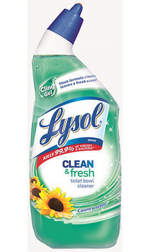 Lysol Clean & Fresh Toilet Bowl Cleaner