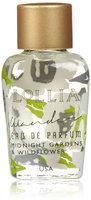 Lollia Wander Little Luxe Eau de Parfum