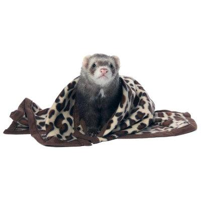 Marshall Pet Products SMR00112 Designer Fleece Blanket