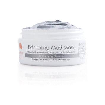 Tree Hut Skincare Exfoliating Mud Mask Detoxifying Charcoal